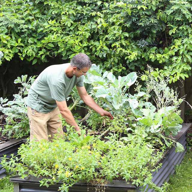a man working on a raised flower bed