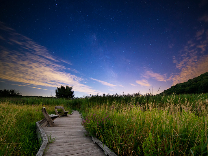 starry twilight landscape with boardwalk