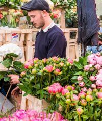 columbia road flower market peonies