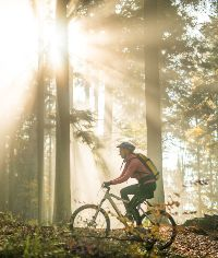 woman cycling through a wooded area