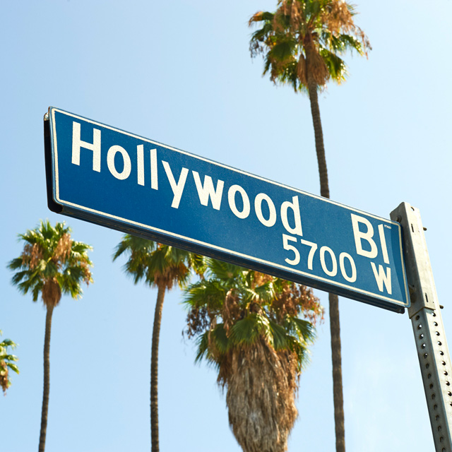Hollywood Blvd street sign with palm trees behind it