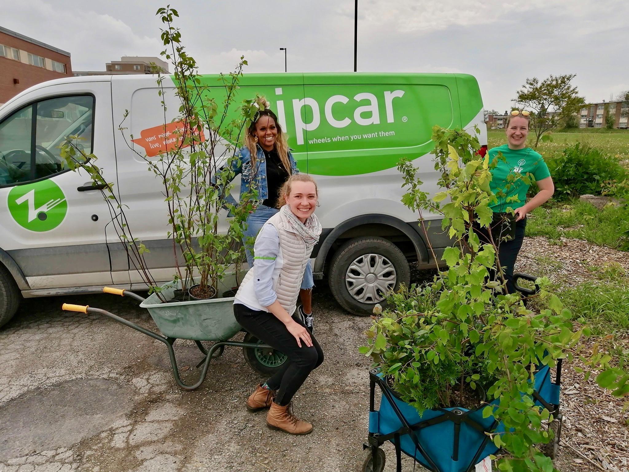 planting trees zipcar