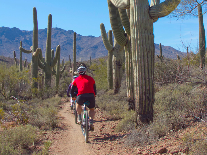 bicyclist on desert path