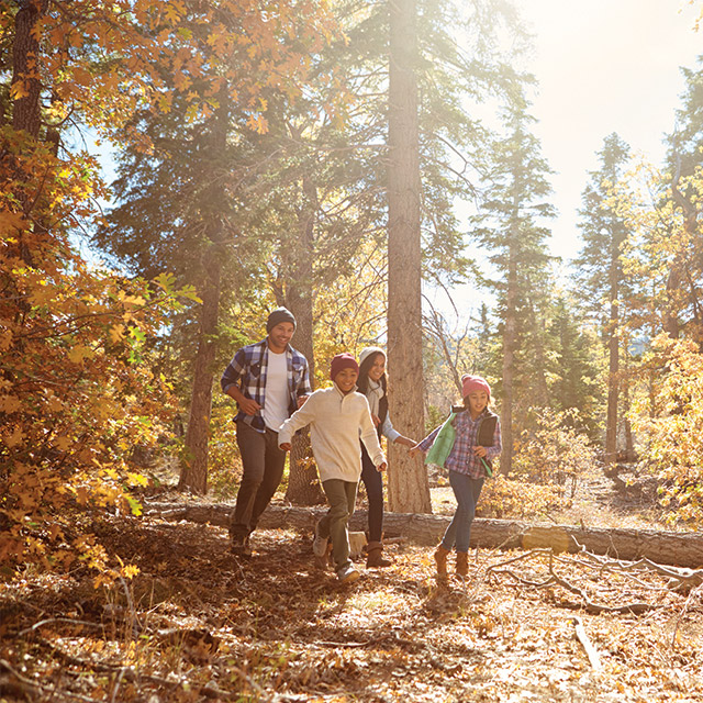 four people in fall clothing walking through a forest