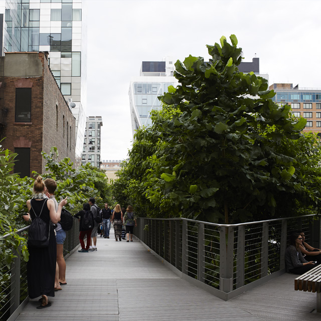 Changing City Landscapes: How A Freight Train Route Became