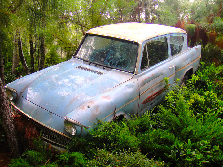 a Ford Anglia car in the woods