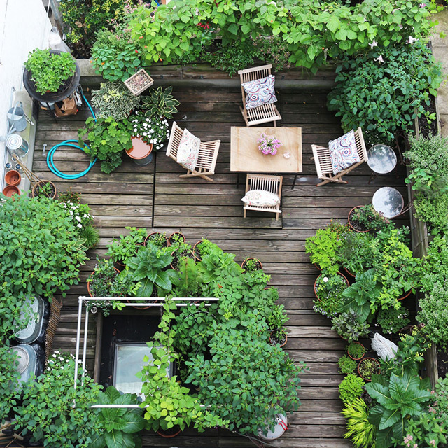 No Backyard, No Problem. Start Your Balcony Garden