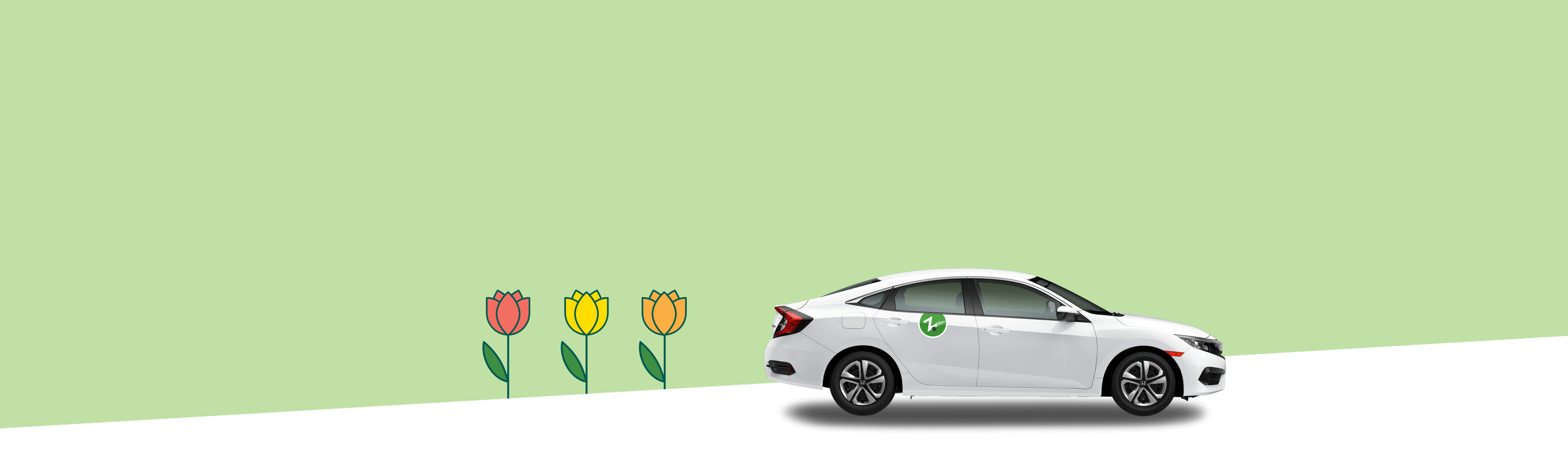 Light green background with illustrated tulips and a Zipcar in front of it