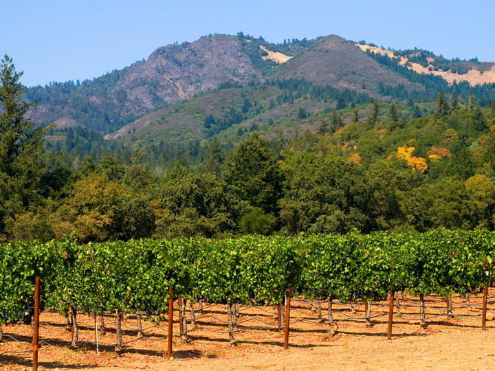 northern california wine country