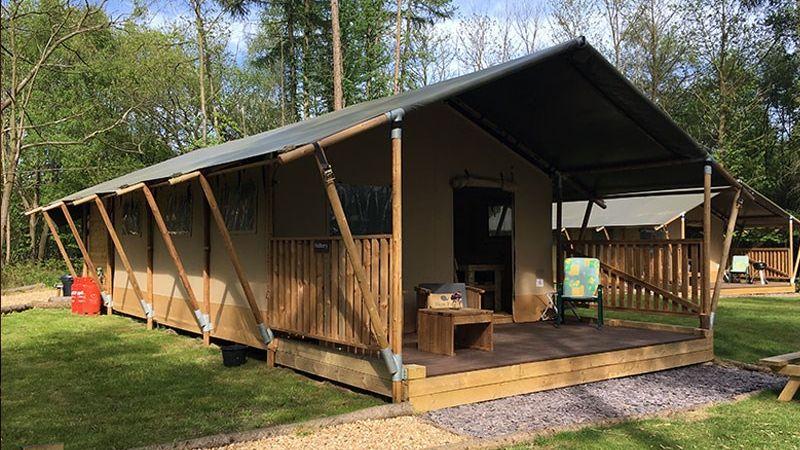forest getaways safari tent