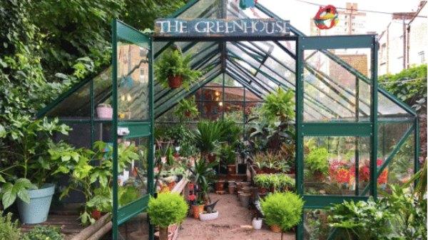 Greenhouse at Battersea Flower Station Garden Centre