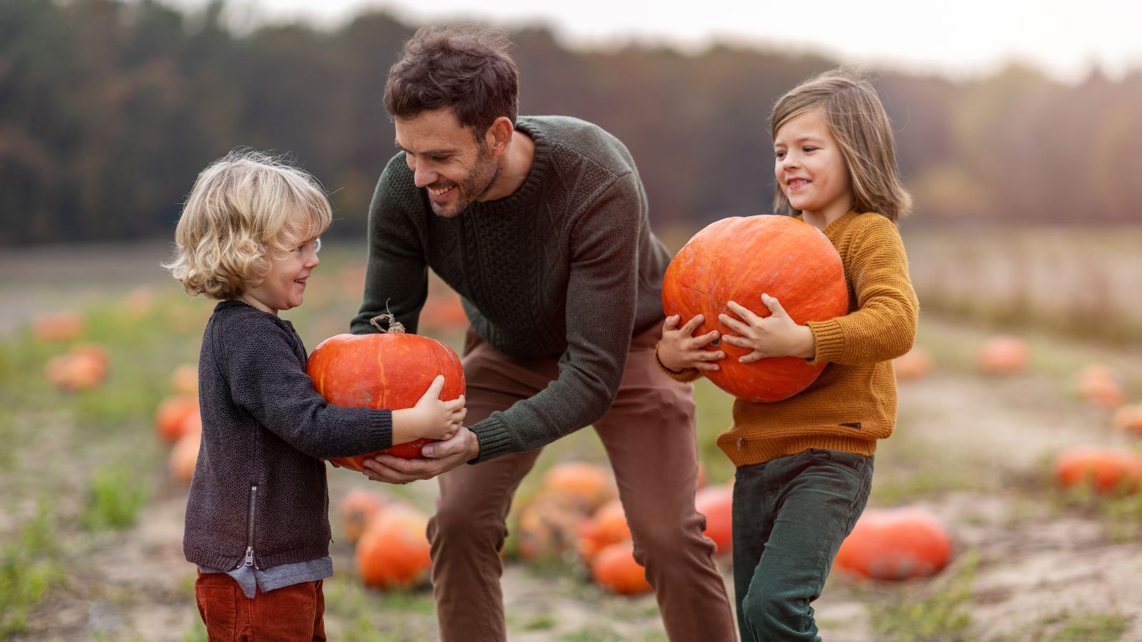 a family picking pumpkins
