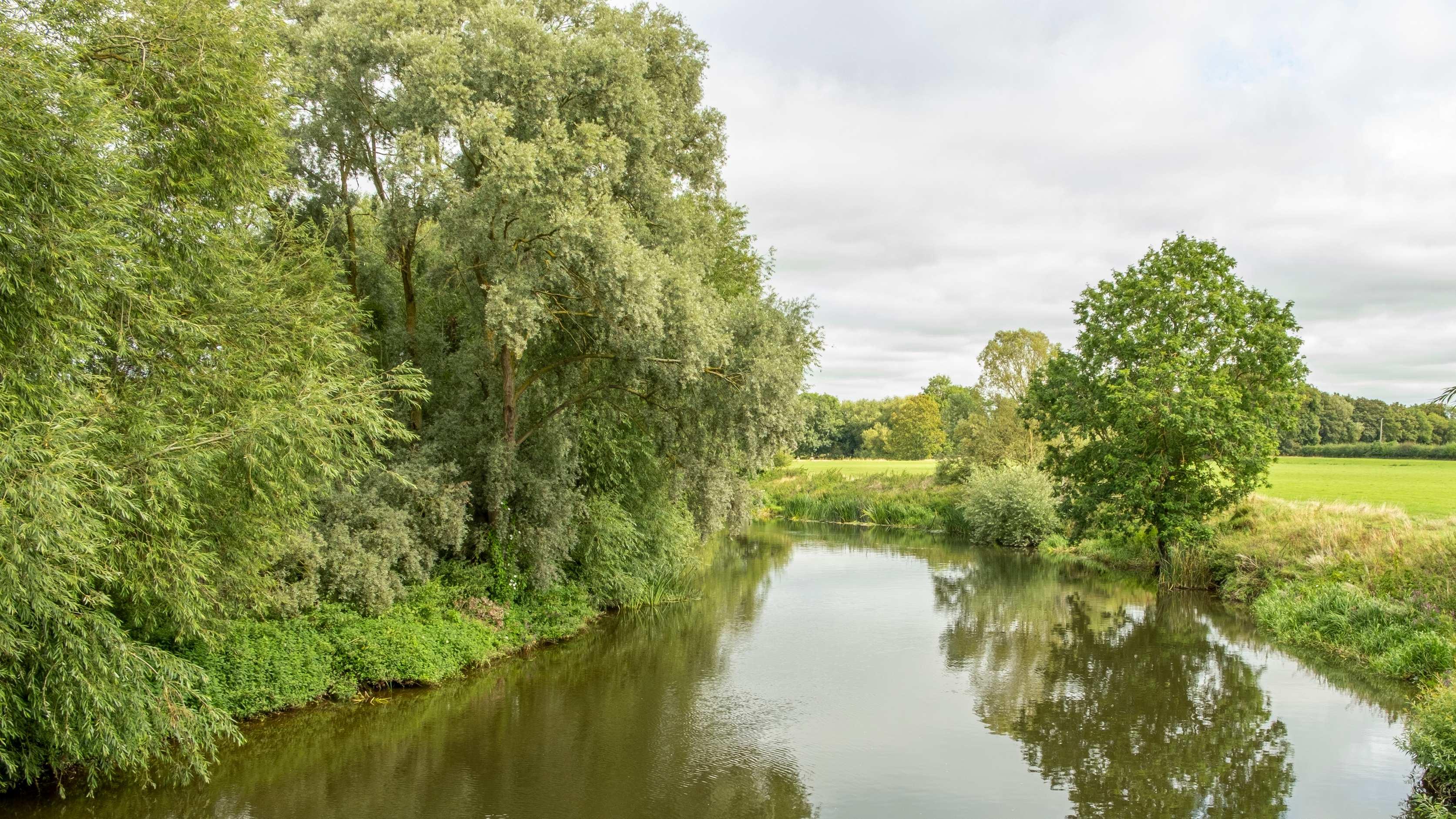 Norbury park