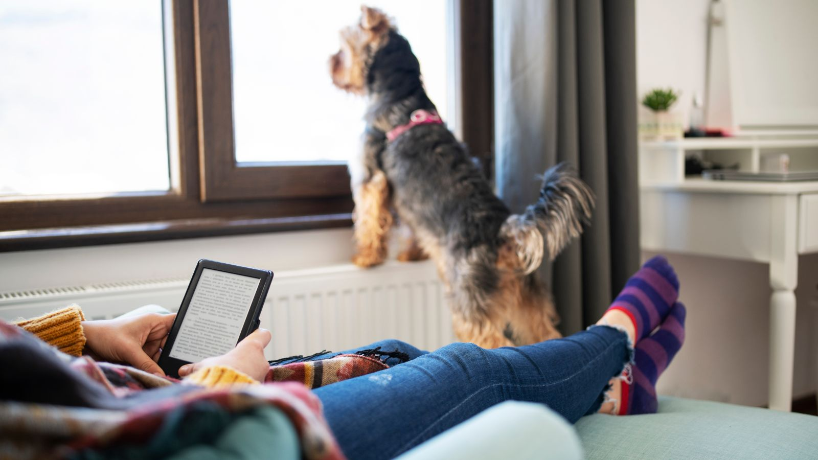 relaxing with an e-reader