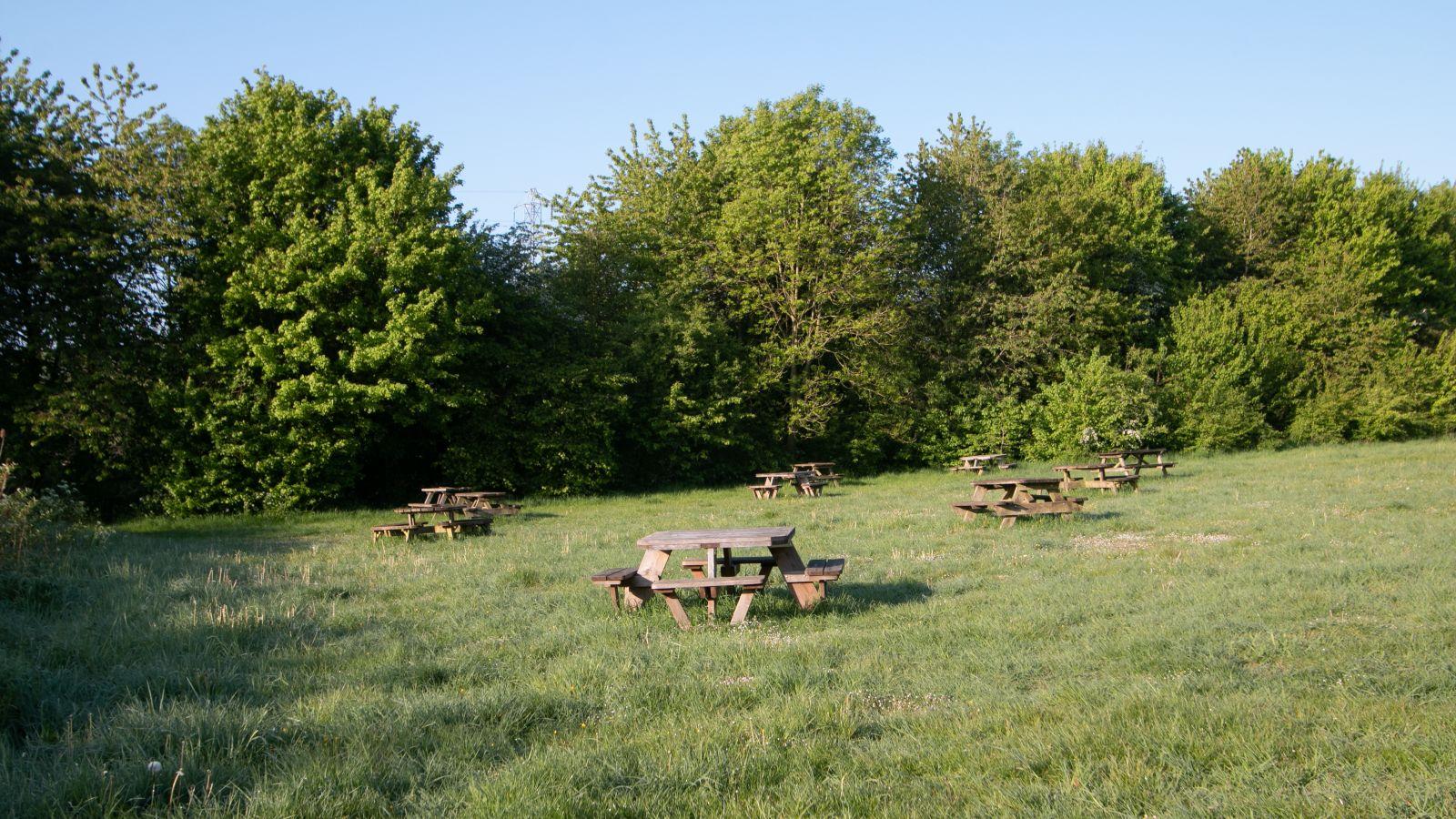 Lullingstone Country Park empty benches