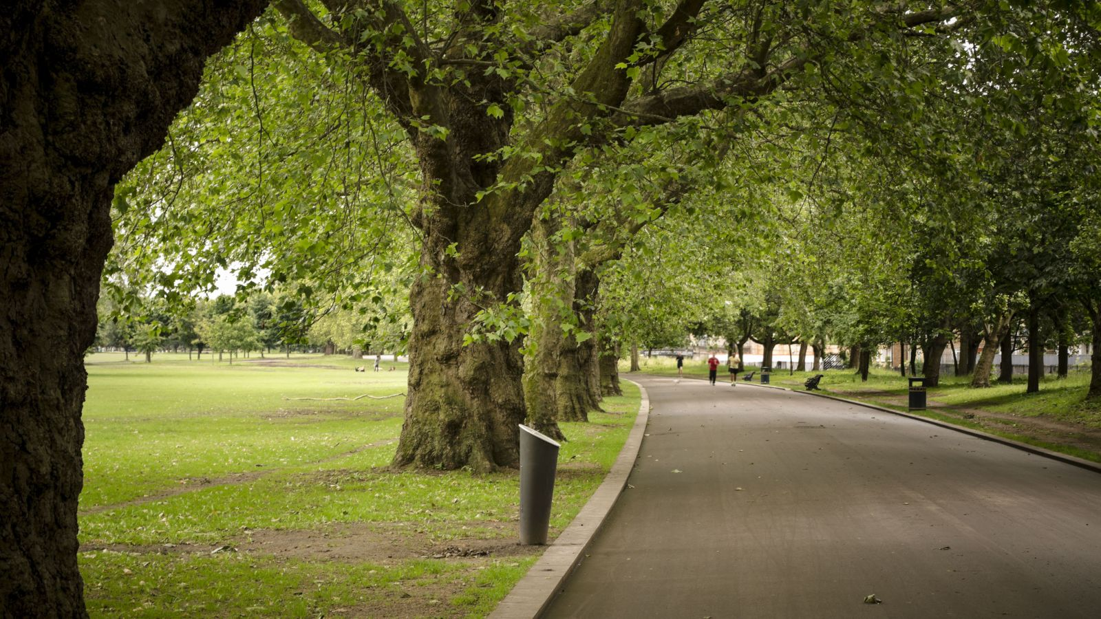 victoria park with runners
