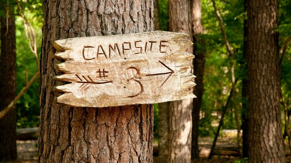 tree trunk with wood sign and arrow to campsite