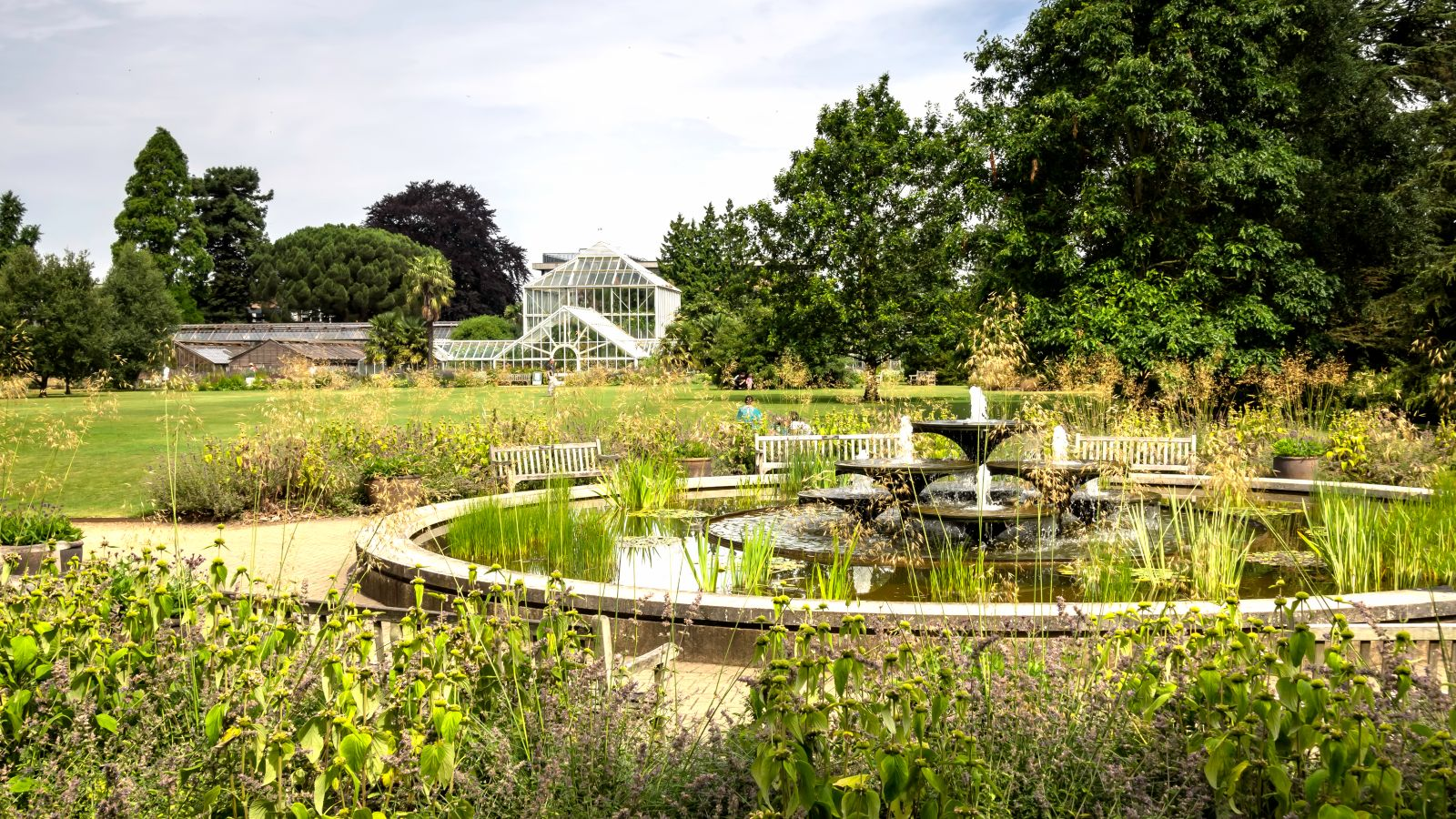 Cambridge botanical gardens